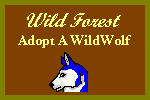 Click here for the Wild Forest, home of the WildWolves!